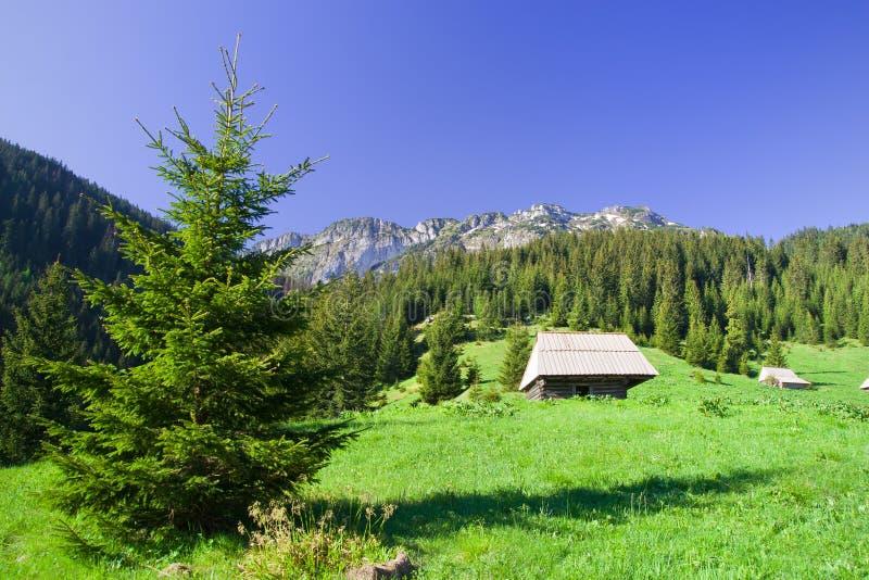 Montañas de Tatra en Polonia fotografía de archivo