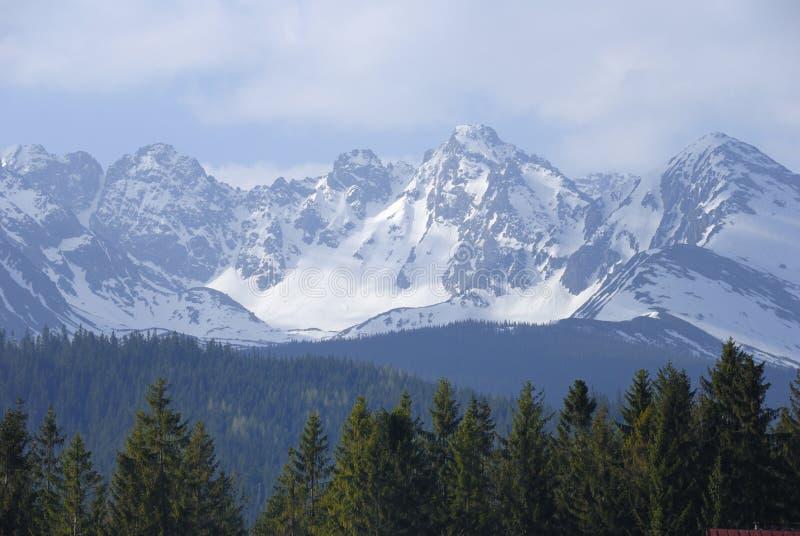 Montañas de Tatra en resorte imágenes de archivo libres de regalías