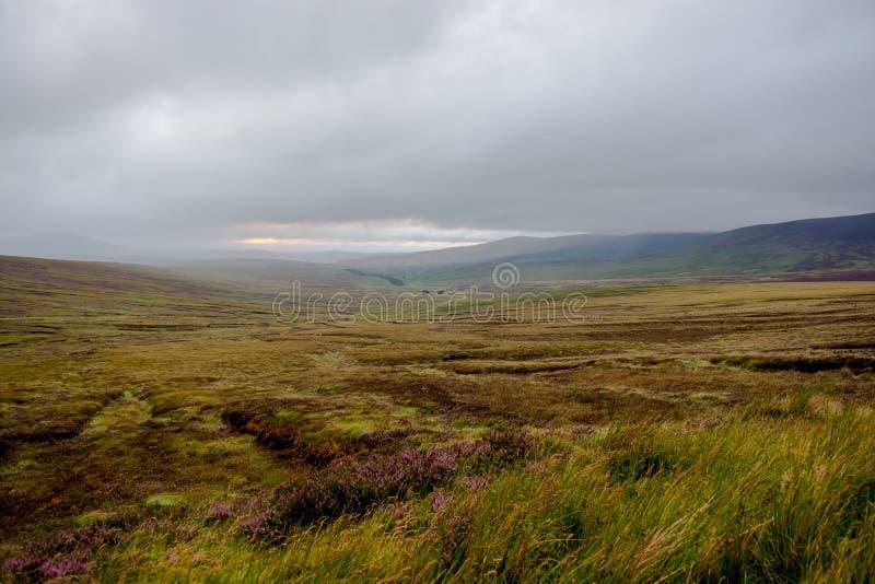 Montañas de Wicklow en Irlanda fotografía de archivo libre de regalías