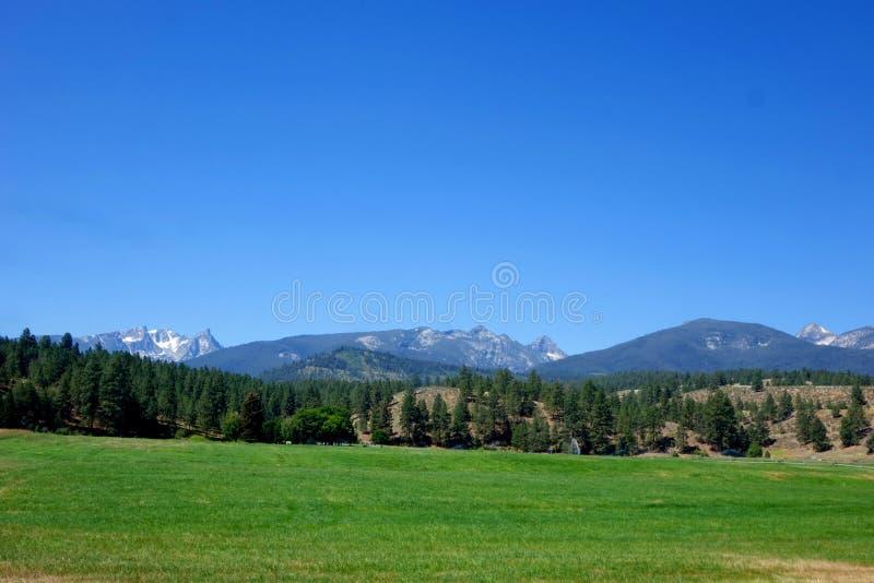 Montañas del Bitterroot cerca de Darby, Montana fotografía de archivo
