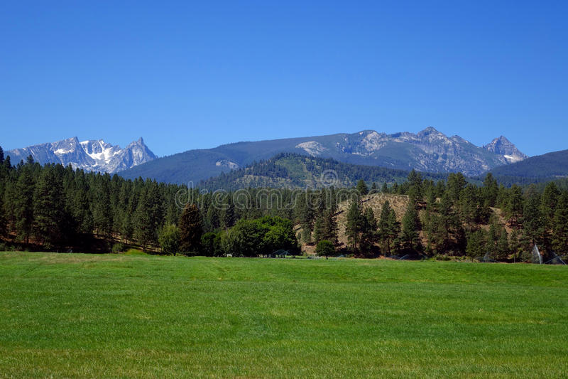 Montañas del Bitterroot cerca de Darby, Montana foto de archivo