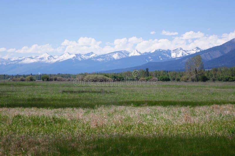 Montañas del Bitterroot cerca de Hamilton, Montana fotografía de archivo