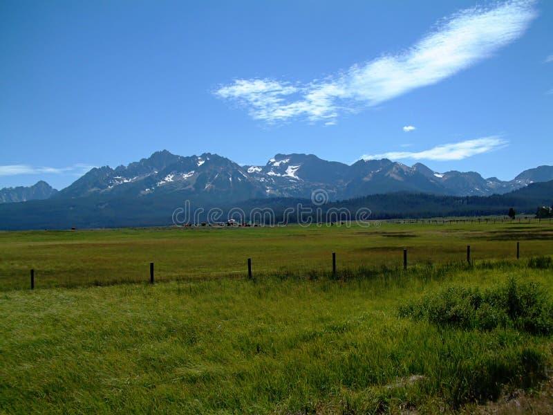 Montañas del diente de sierra de Idaho fotos de archivo
