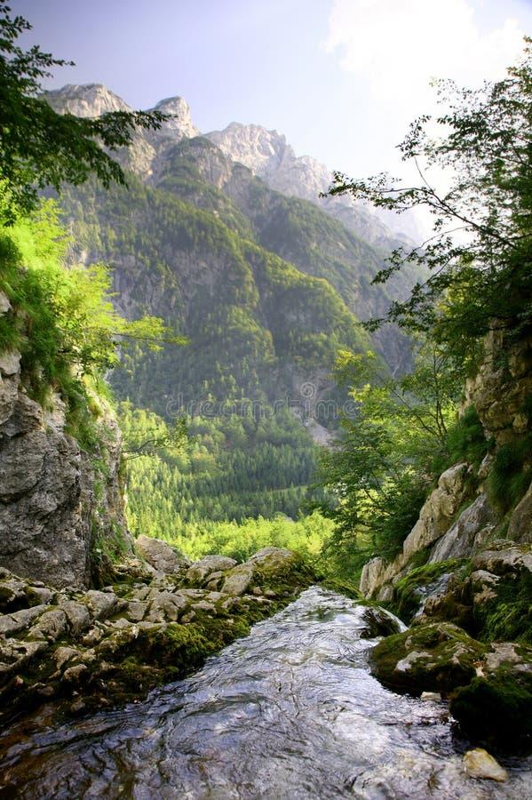 Montañas del resorte foto de archivo libre de regalías