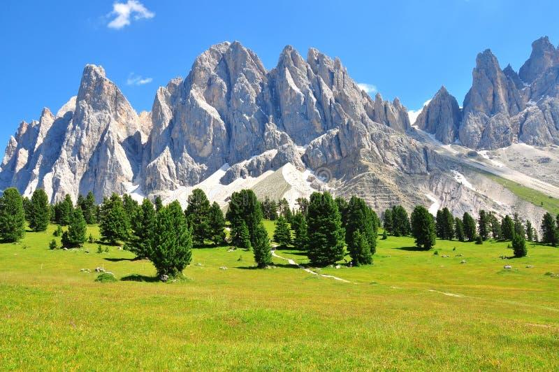 Montañas el verano fotografía de archivo
