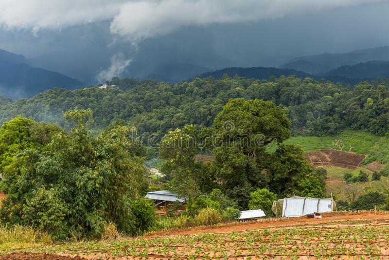 Montañas en la región de lunes Chaem de Chiang Mai, Tailandia foto de archivo libre de regalías