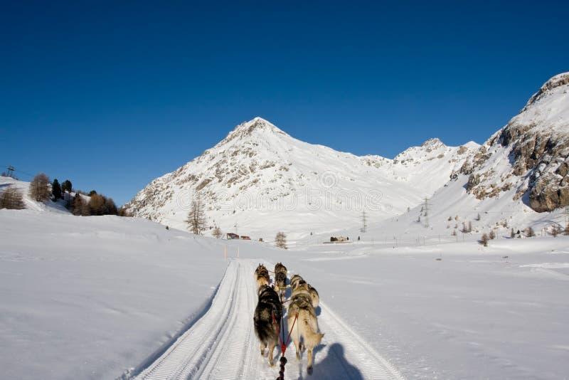 Montañas en las montan@as suizas fotografía de archivo