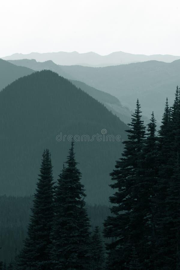 Montañas en monocromo fotografía de archivo