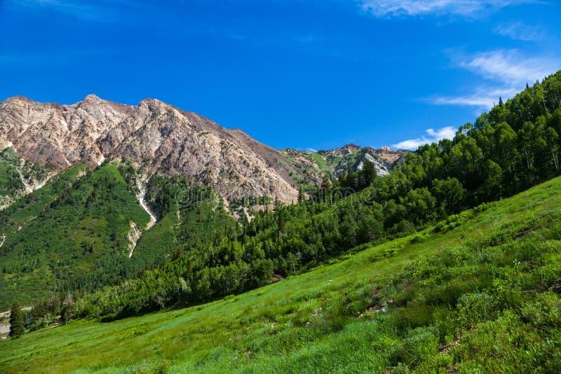 Montañas en verano imagen de archivo