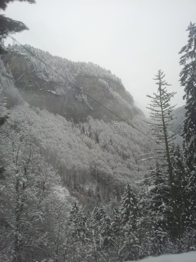 Montañas francesas Snowscape con arbolado y el acantilado fotos de archivo