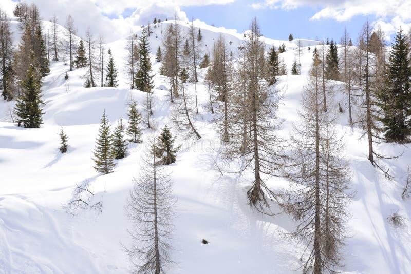 Montañas hermosas cubiertas con nieve los picos de las montañas son el fondo de las cuestas del esquí para los esquiadores fotografía de archivo libre de regalías