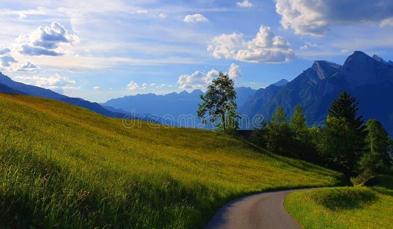 Montañas hermosas de las montañas suizas con el prado verde con el cielo azul y las nubes fotos de archivo libres de regalías
