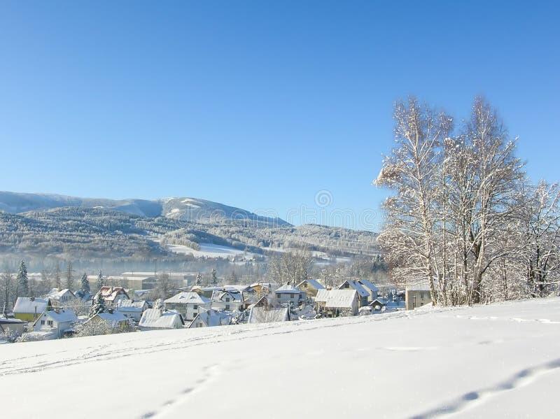 Montañas majestuosas del paisaje misterioso del invierno en invierno Árbol nevado del invierno mágico Camino del invierno en las  fotografía de archivo libre de regalías