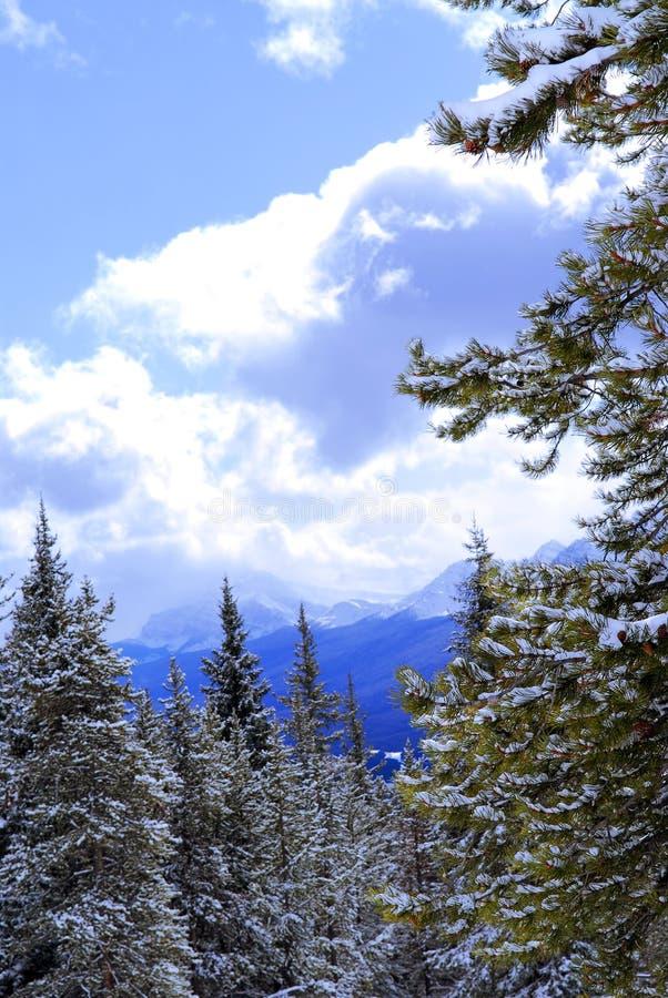 Montañas Nevado fotografía de archivo
