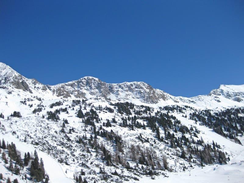 Montañas Nevado en las montañas suizas en un día de invierno hermoso fotos de archivo