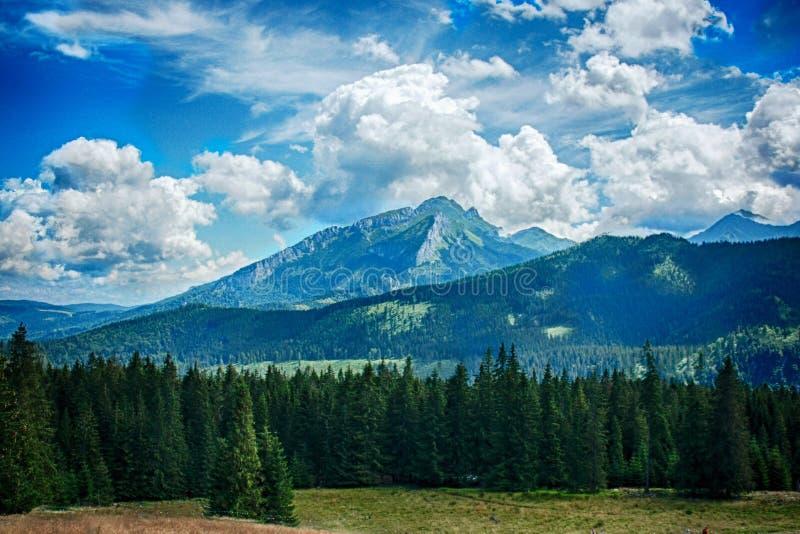 Montañas polacas imagen de archivo