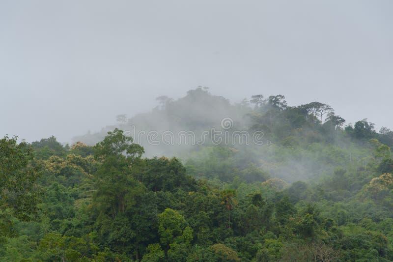 Montañas por la mañana imagenes de archivo