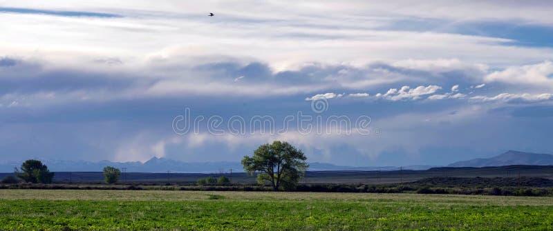 Montañas que sorprenden en el parque nacional magnífico de Teton imágenes de archivo libres de regalías