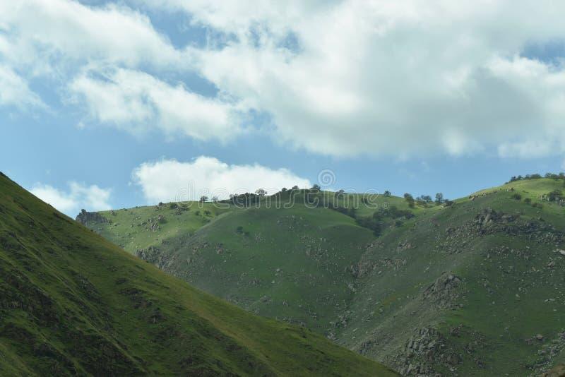 montañas que tiene un terreno rocoso y un paisaje hermoso imagen de archivo libre de regalías