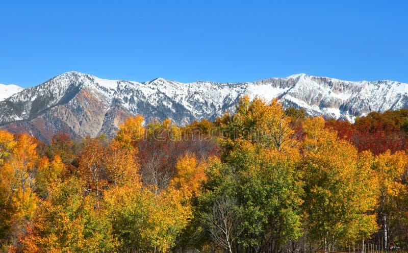 Montañas rocosas de Colorado fotos de archivo