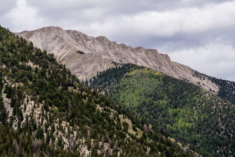 Montañas rocosas del Mt princeton Colorado imagen de archivo libre de regalías