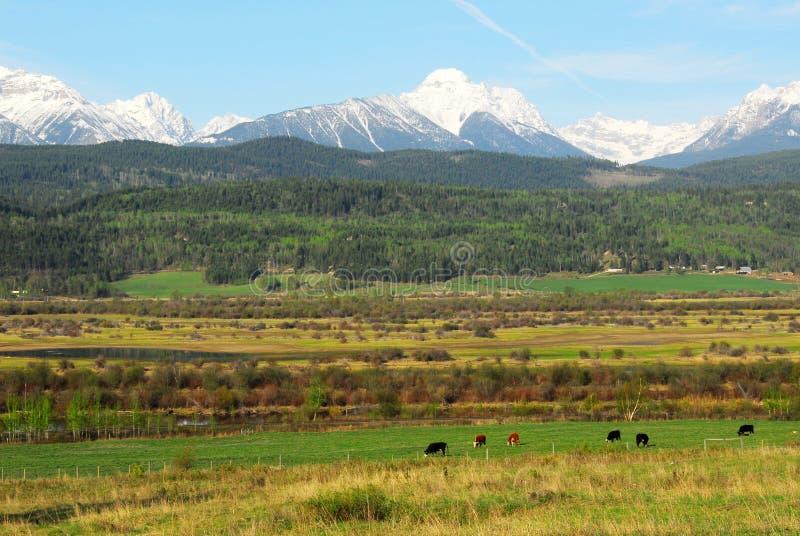 Montañas rocosas y granjas imagenes de archivo
