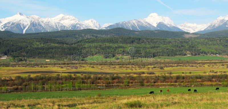 Montañas rocosas y granjas imágenes de archivo libres de regalías