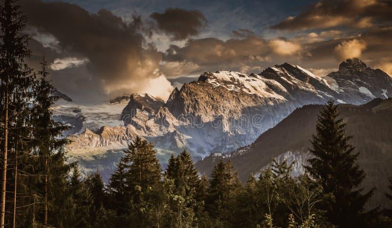 Montañas suizas en verano imagen de archivo libre de regalías