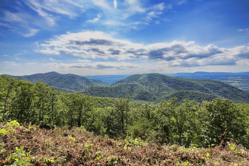 Montañas verdes foto de archivo libre de regalías