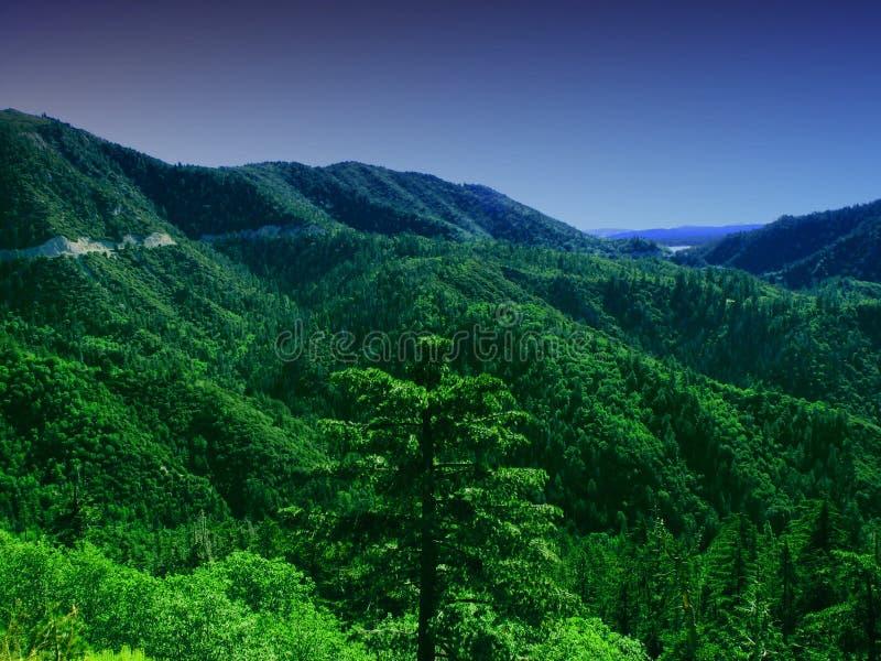 Montañas verdes y caída de la noche fotografía de archivo