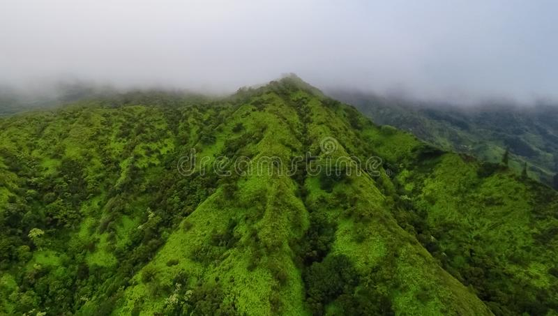 Montañas verdes y cielo brumoso, visión aérea desde un helicóptero, Kauai, Hawaii imagen de archivo