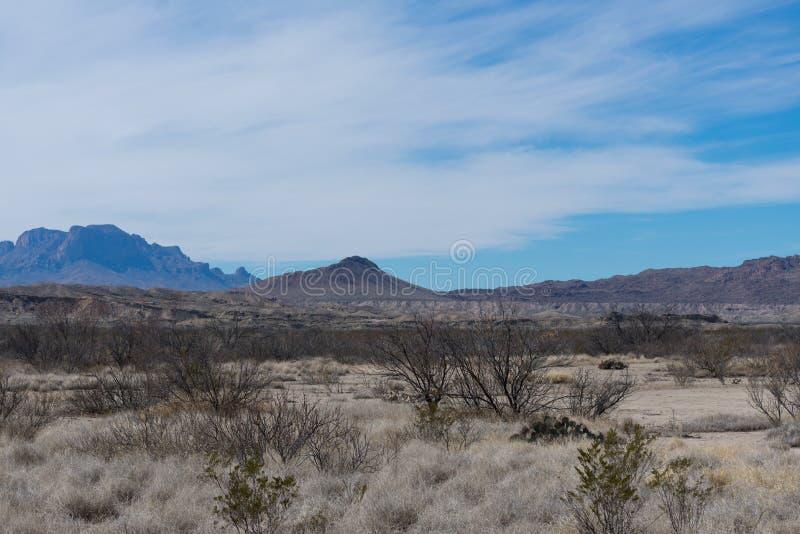 Montañas y árbol en el desierto imagenes de archivo