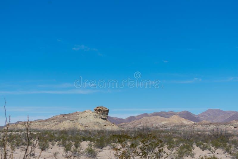 Montañas y árbol en el desierto imagen de archivo