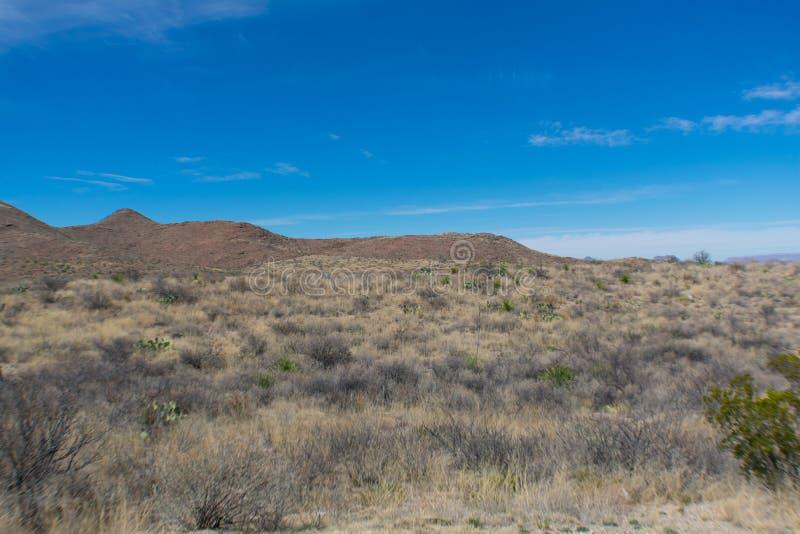Montañas y árbol en el desierto cerca de un camino foto de archivo