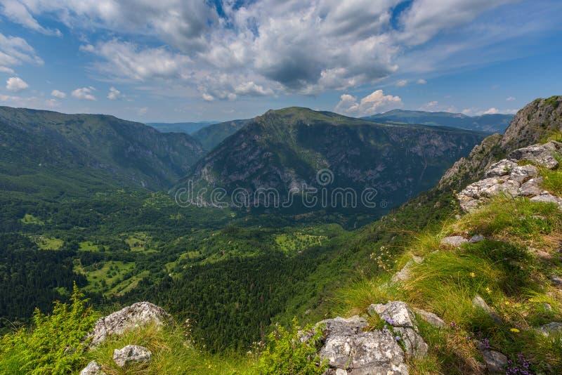 Montañas y barranco en Durmitor, Montenegro foto de archivo libre de regalías
