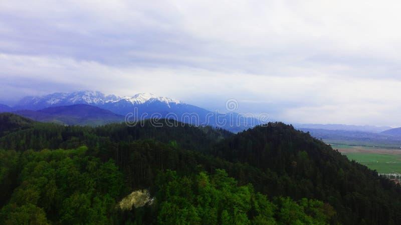 Montañas y bosque foto de archivo