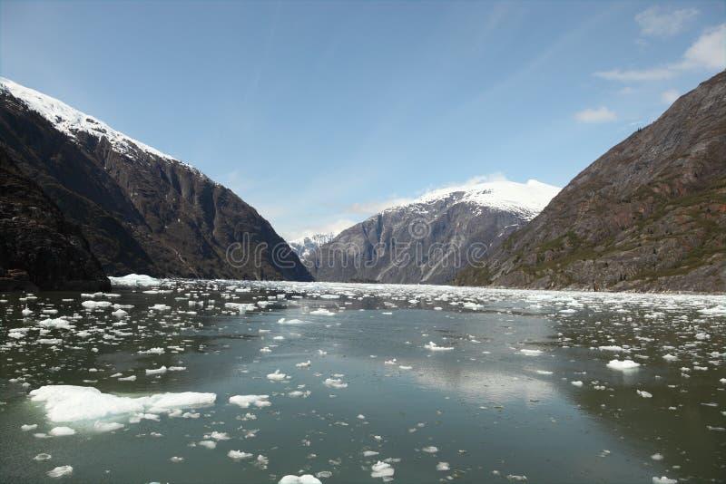 Montañas y icebergs fotografía de archivo