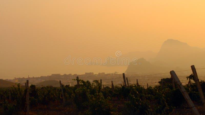 Montañas y viñedos en el fondo de la puesta del sol imagenes de archivo