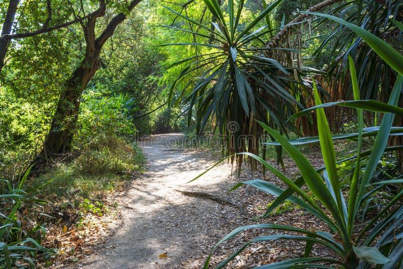 Montag-Repospark, Korfu-Stadt, Griechenland lizenzfreie stockbilder
