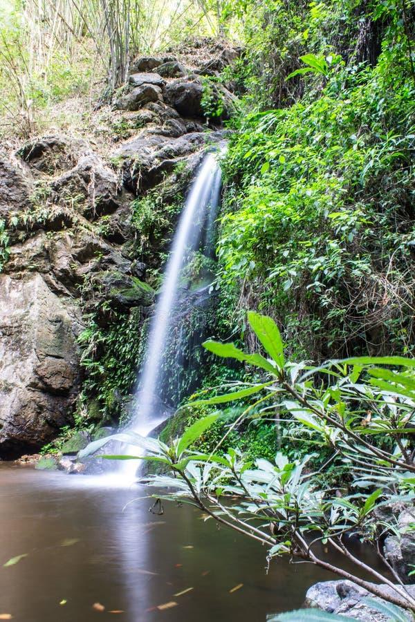 Montag Tha als Wasserfall in Doi Suthep - Pui National Park lizenzfreie stockbilder