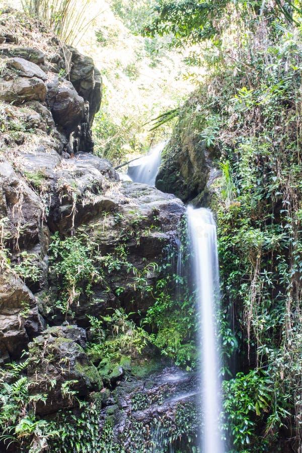 Montag Tha als Wasserfall in Doi Suthep - Pui National Park, Chiangmai lizenzfreies stockfoto
