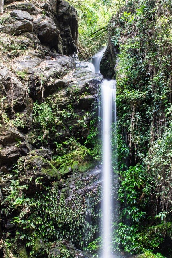 Montag Tha als Wasserfall in Doi Suthep - Pui National Park, Chiangmai lizenzfreie stockfotografie