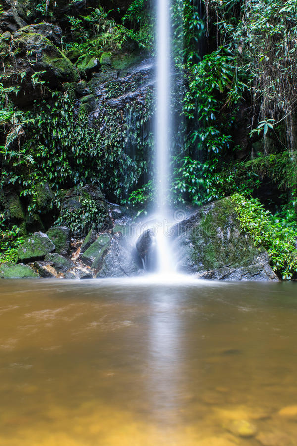 Montag Tha als Wasserfall in Doi Suthep - Pui National Park, Chiangmai stockfotos