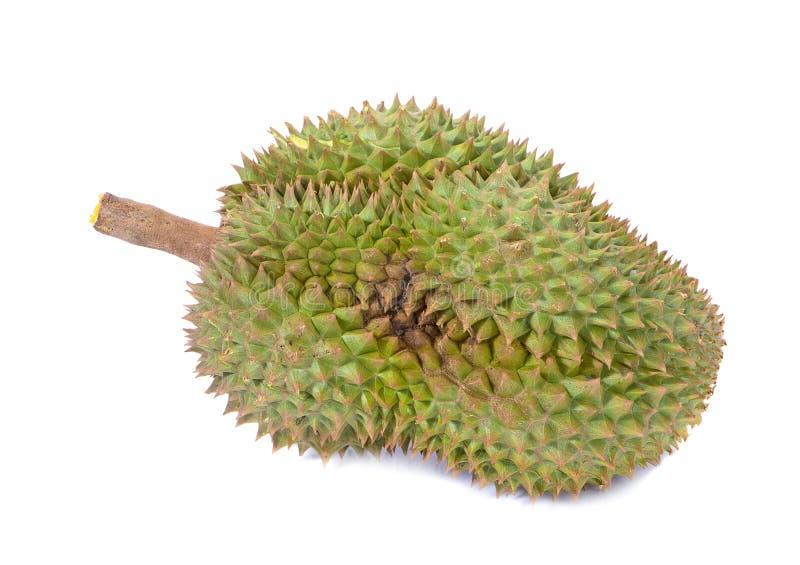 Montag-Zapfen Durian ist Fruchtplatte tropischer Durian und K?nig von Fr?chte Durian auf wei?er lokalisierten Hintergrund dem ges stockfotos