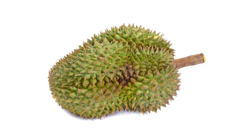 Montag-Zapfen Durian ist Fruchtplatte tropischer Durian und K?nig von Fr?chte Durian auf wei?er lokalisierten Hintergrund dem ges stockbild