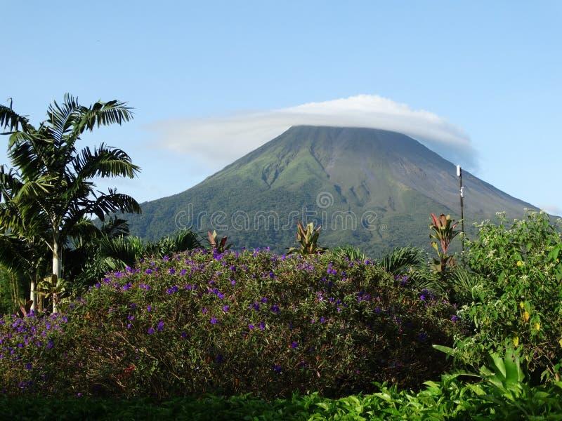 Montagem Arenal em Costa Rica A paisagem pitoresca, nuvens cobre a parte superior da montanha, em torno das flores, palmeiras fotos de stock royalty free