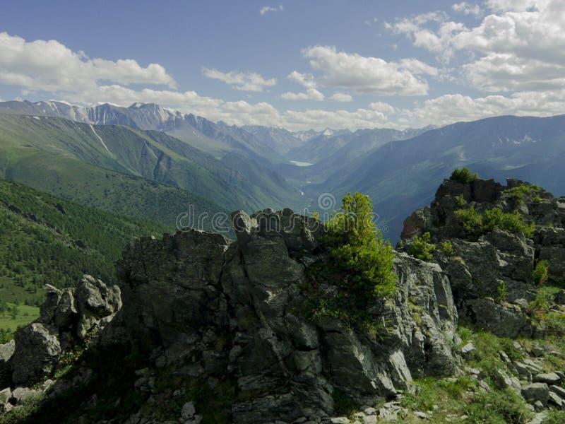 Montagem de Altai imagens de stock