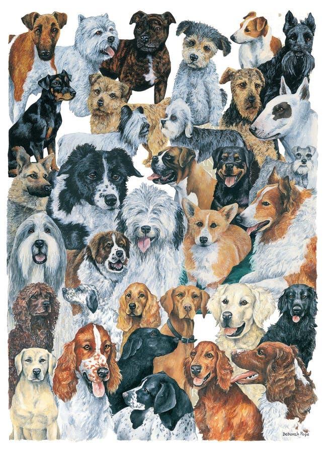 Montagem dos cães fotos de stock