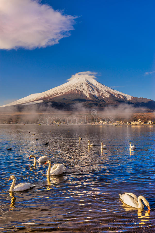Montagem Fuji, Japão imagem de stock royalty free