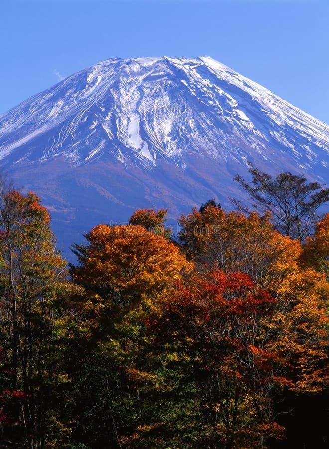 Montagem Fuji na queda VIII fotos de stock royalty free